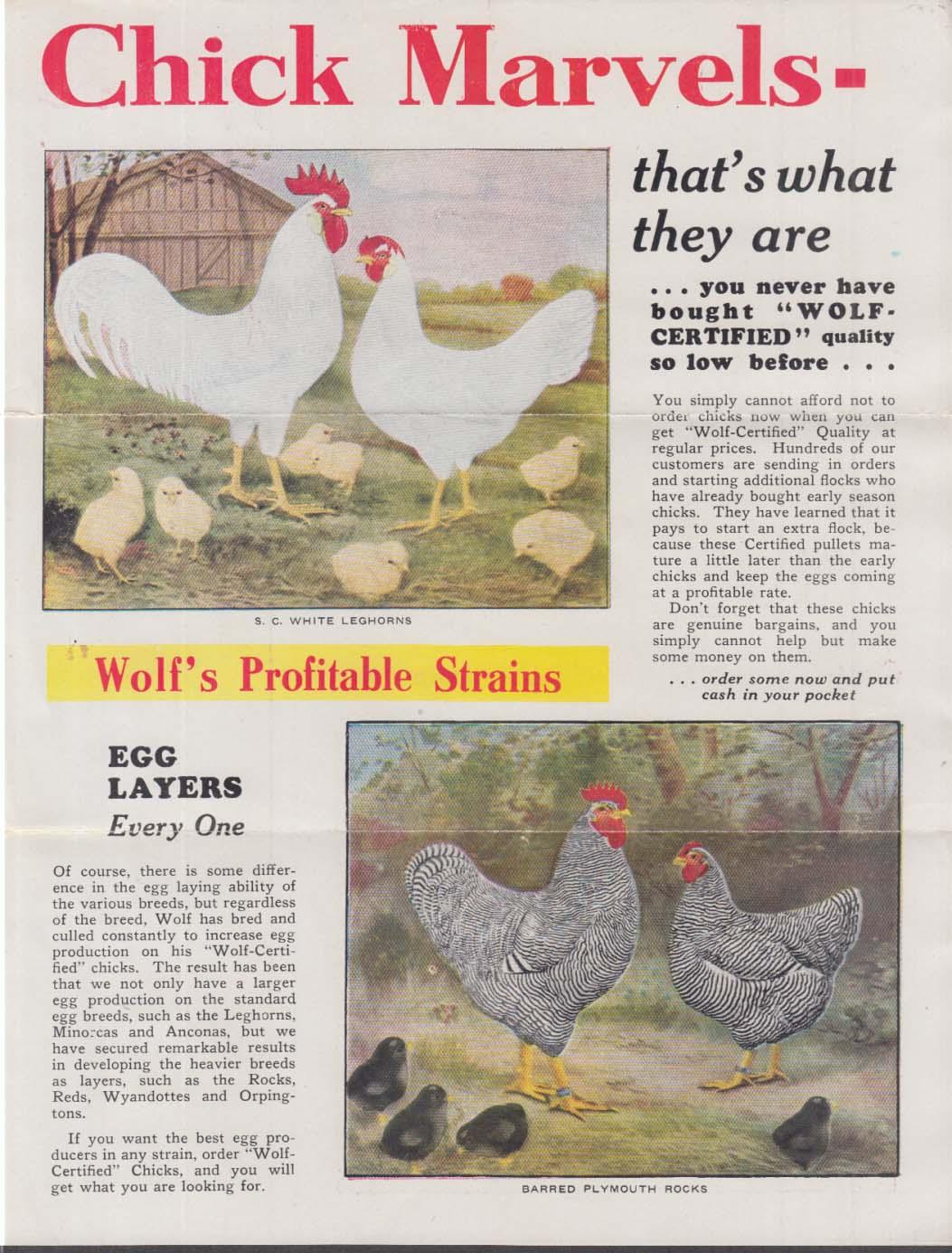 Wolf Chicken Hatching & Breeding Farms Gibsonburg OH mailer 1920