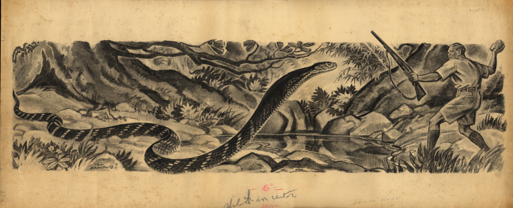 Man with rifle & rock battles a king cobra: print by Paul Bransom; undated