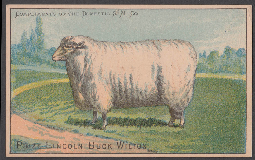Domestic Sewing Machine trade card Lincoln Buck Sheep Wilton ca 1880s