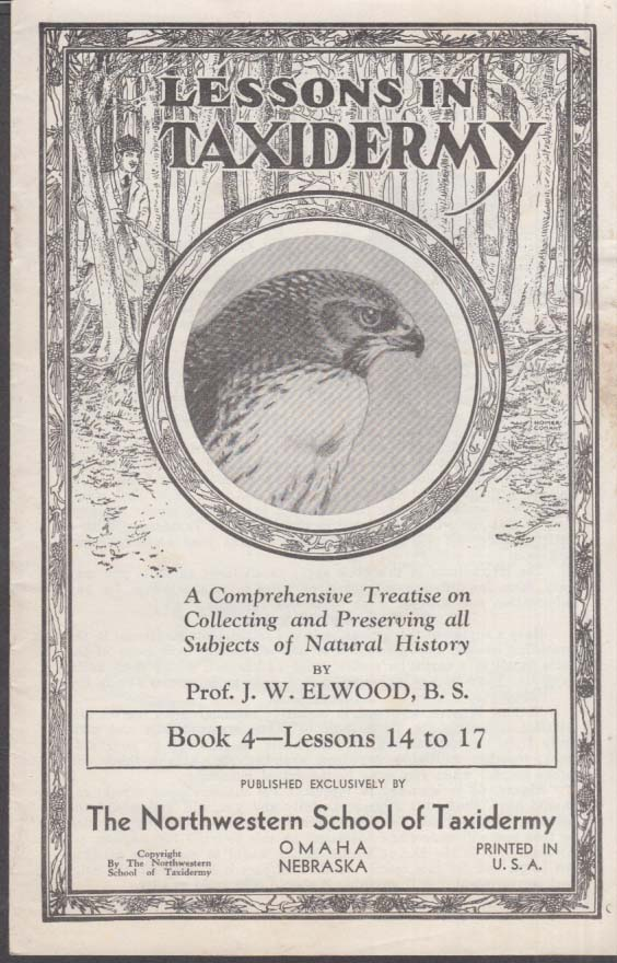 Northwestern School of Taxidermy Omaha Lessons 14-17 1950s large animals