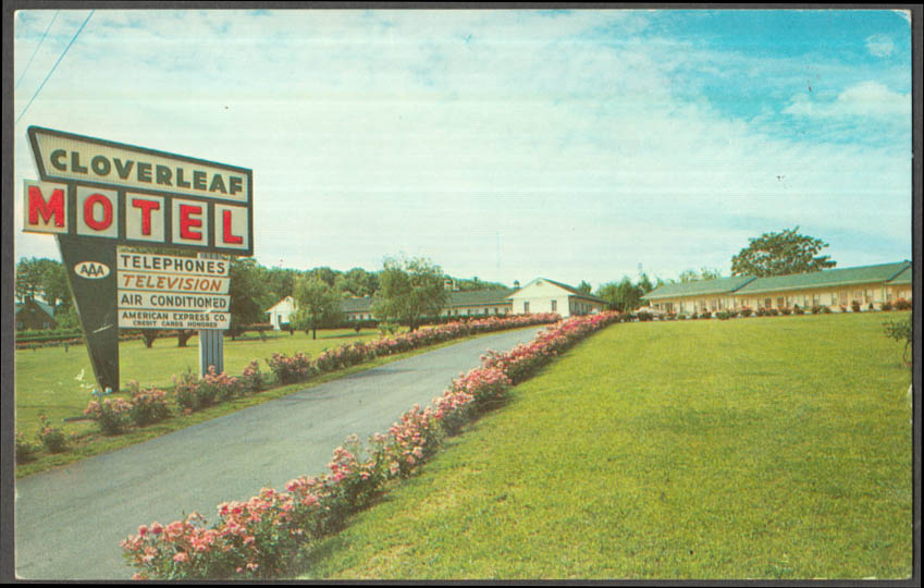 Image for Cloverleaf Motel 631 S Eisenhower Blvd Harrisburg PA postcard ca 1950s