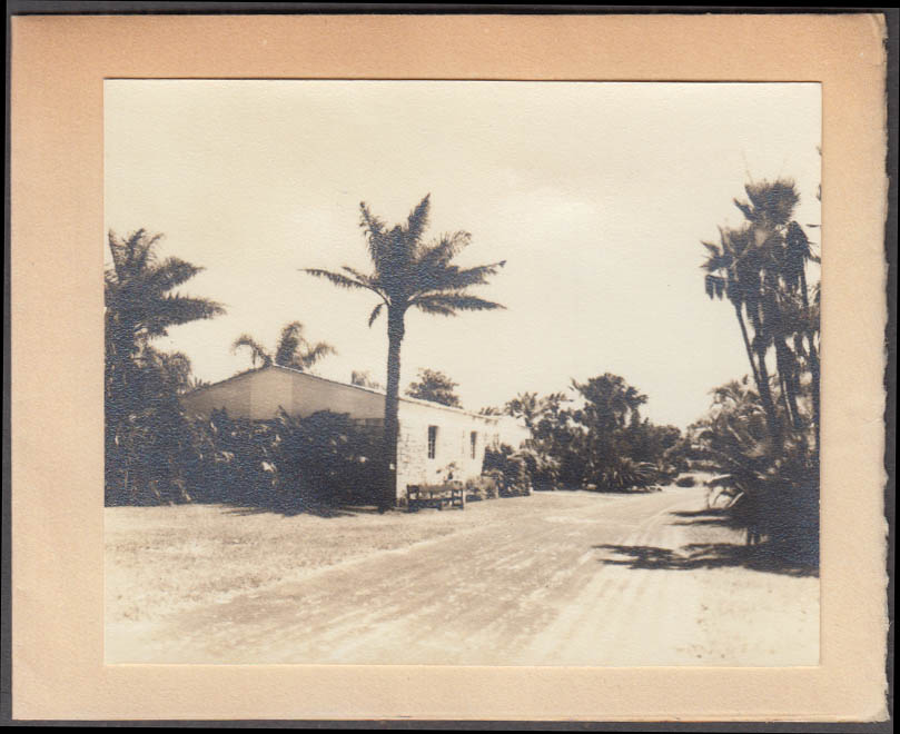 Fairchild Tropical Garden Coconut Grove FL Palm Products Museum card 1930s