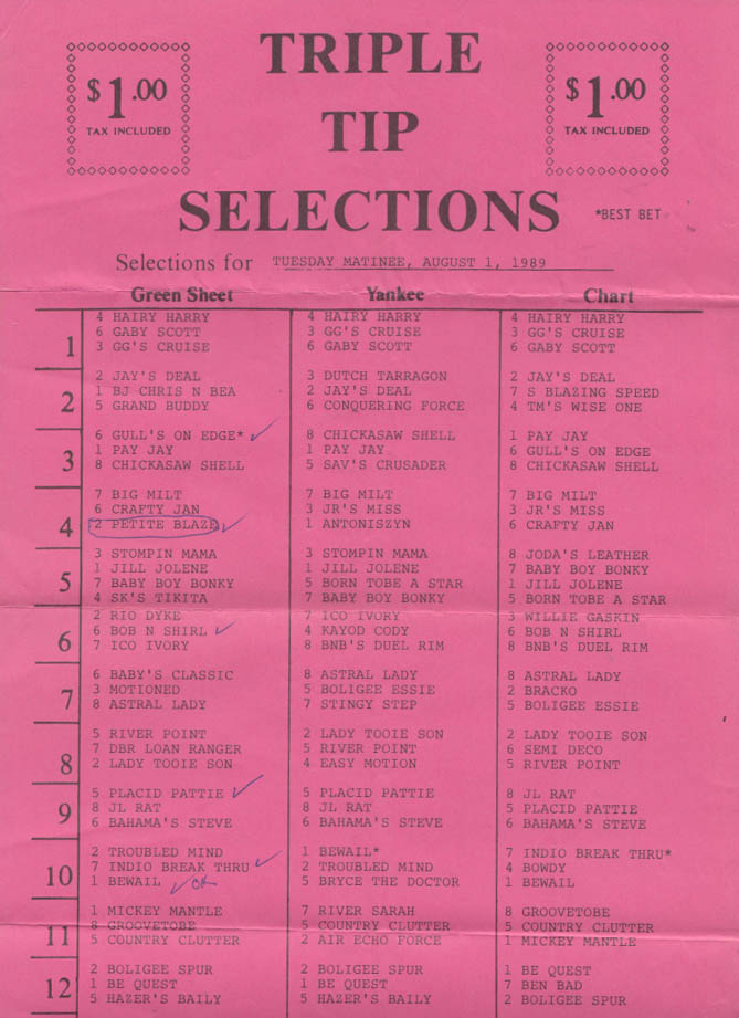 Plainfield Greyhound Park Matinee Program 8/1 1989 w/ tip sheet CT