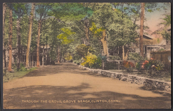 View through the grove Grove Beach Clinton CT postcard 1941