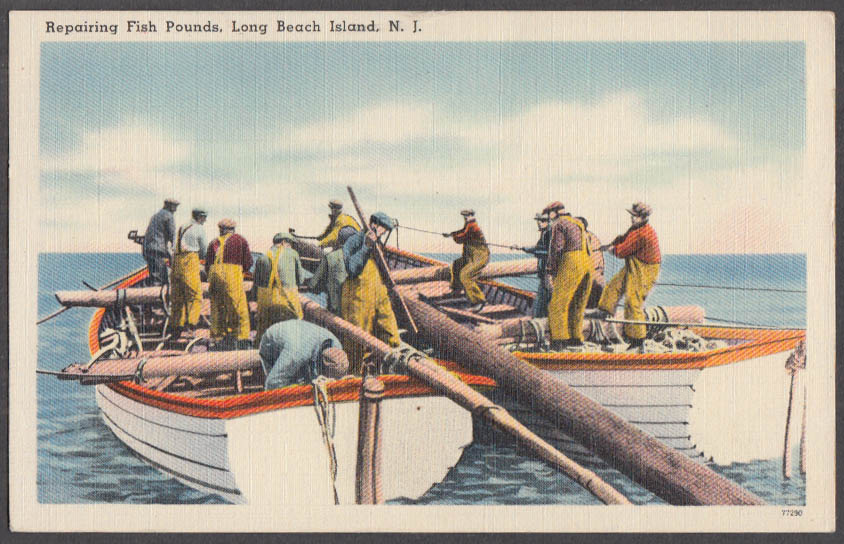 Image for Repairing Fish Pounds off Long Beach Island NJ postcard 1951