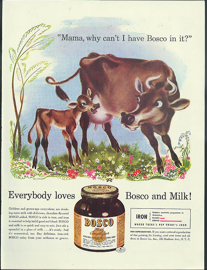 Mama why can't I have Bosco in it? Calf ask mother cow ad 1941