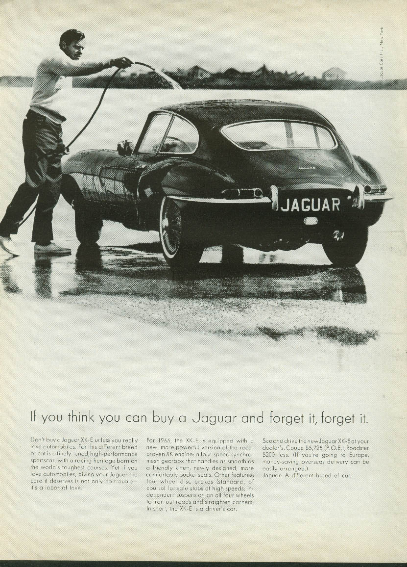 If you think you can buy a Jaguar XK-E Coupe & forget it, forget it ad 1965