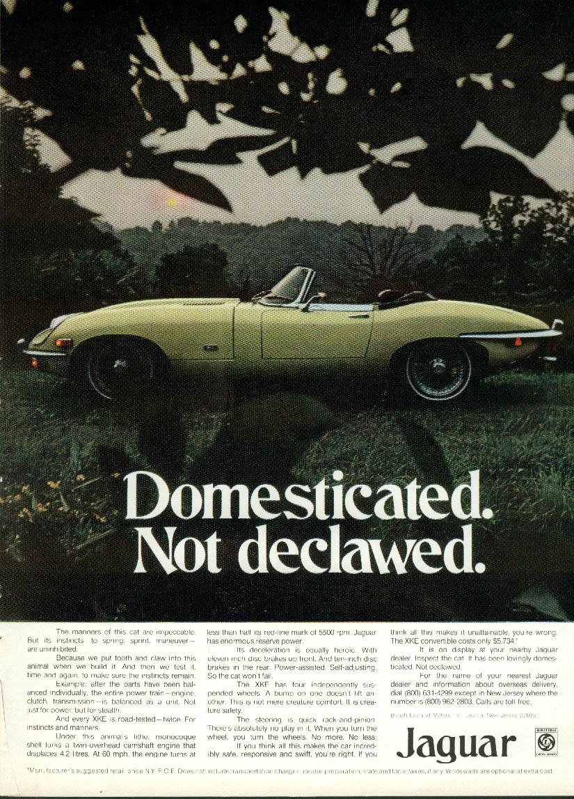 Domesticated. Not declawed. Jaguar XK-E Roadster ad 1971
