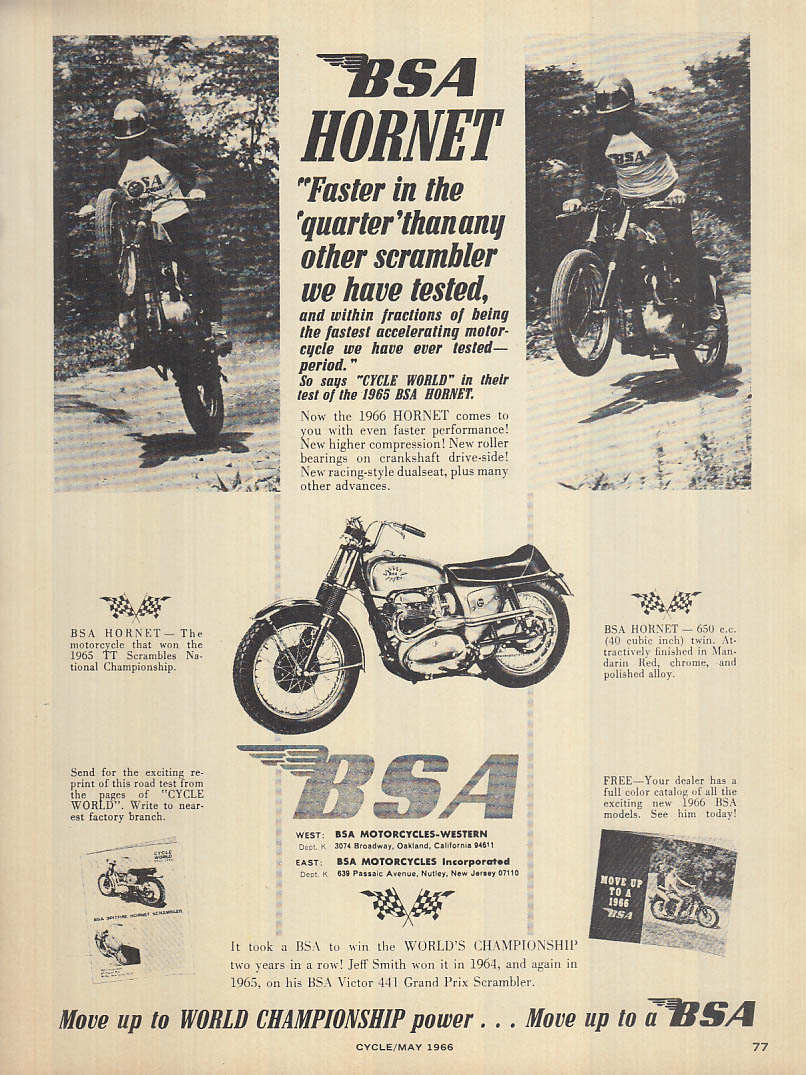Faster in the quarter tha any other scrambler BSA Hornet motorcycle ad 1966