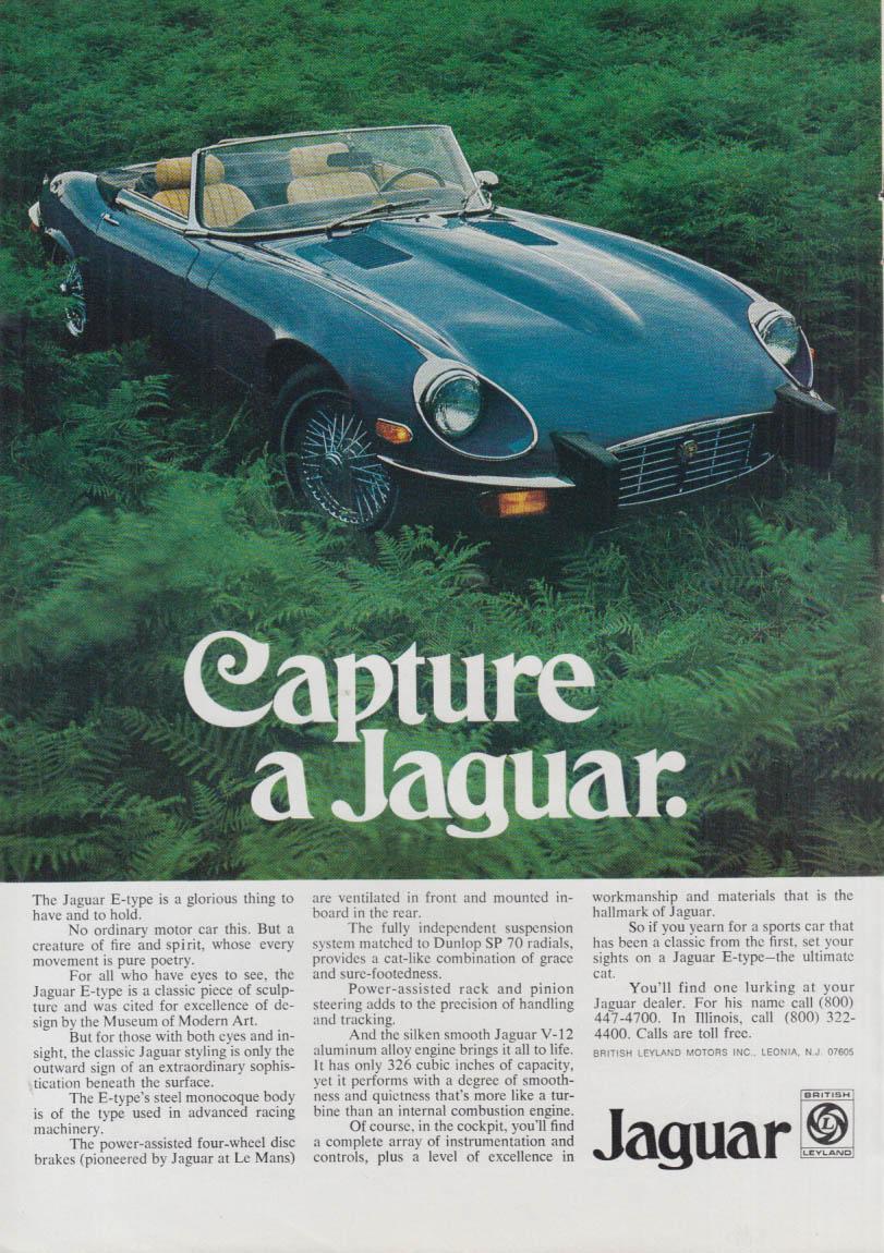 Capture a Jaguar XK-E ad 1975 NY