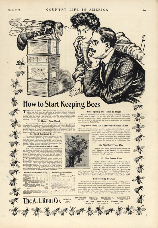 Image for How to Start Keeping Bees - A I Root Medina OH ad 1906 CL