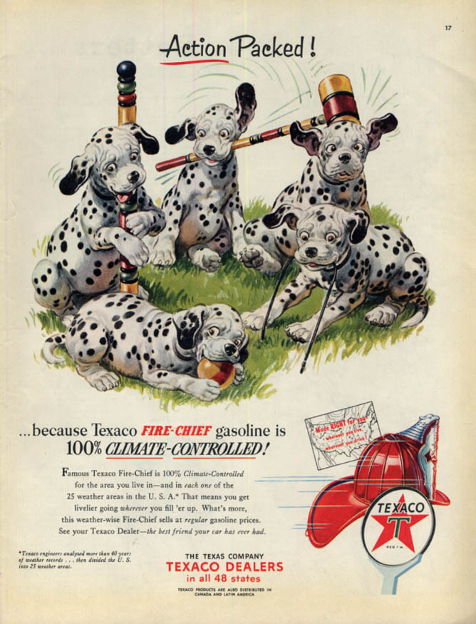 Action Packed! Texaco Gasoline ad 1953 Dalmatian pups battle a croquet set Col