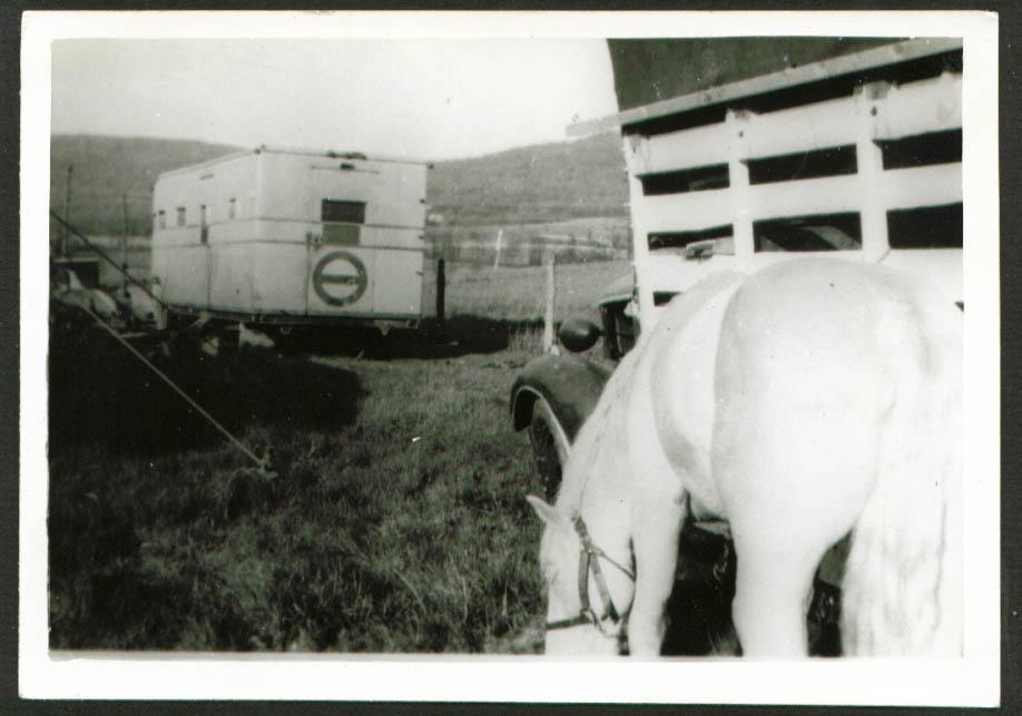 Kay Burns Circus backyard scene horse 5x7 1947