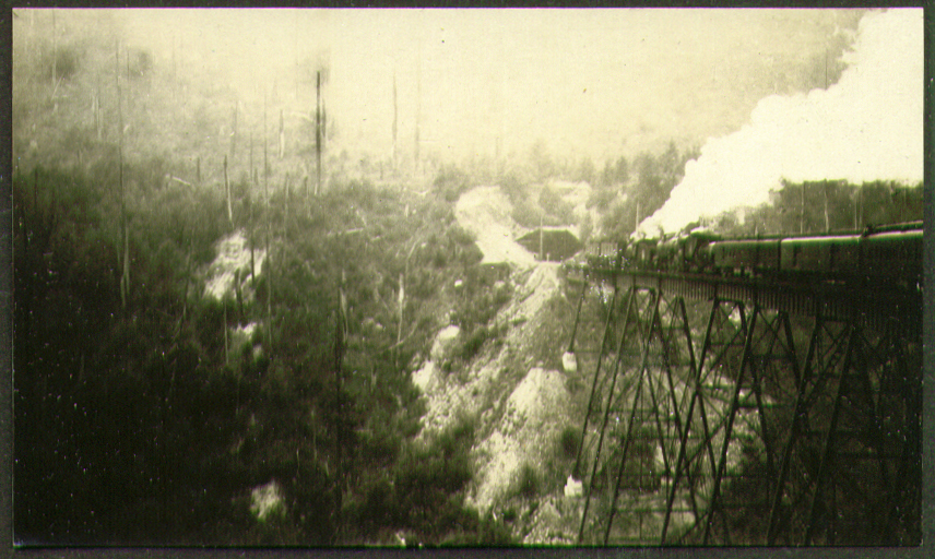 2 Electric + 3 Steam locos on trestle photo 1920s