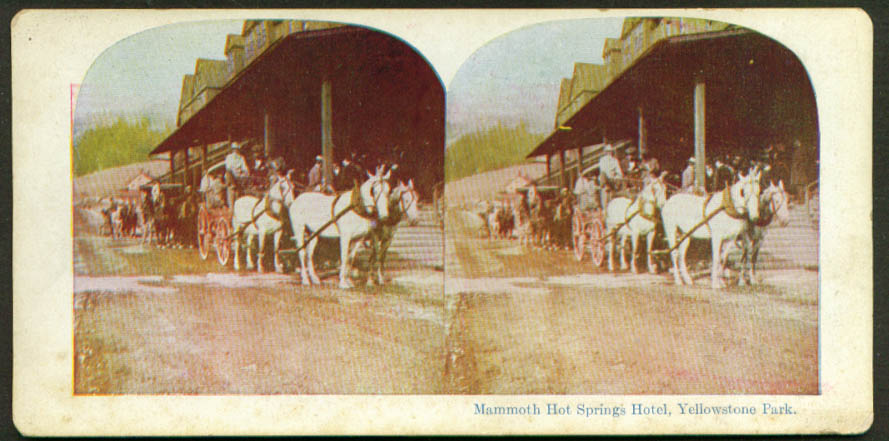 Image for Wagon at Mammoth Hot Springs Hotel Yellowstone stereoview