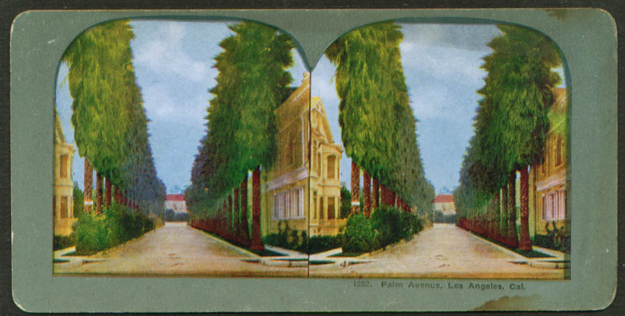 Image for View up Palm Avenue Los Angeles CA stereoview 1900s