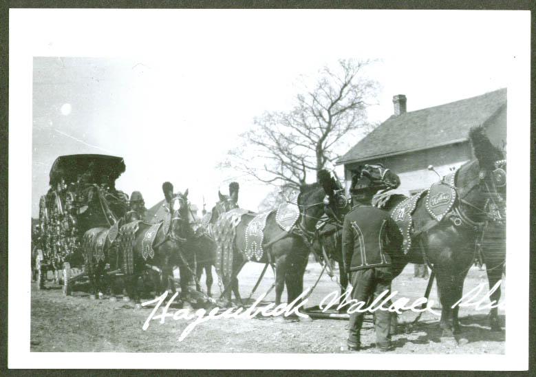 8-horse Bandwagon Hagenbeck-Wallace Circus 1907