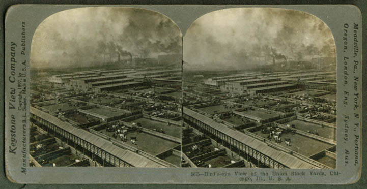 Bird's-eye view Union Stock Yards Chicago stereoview 1897