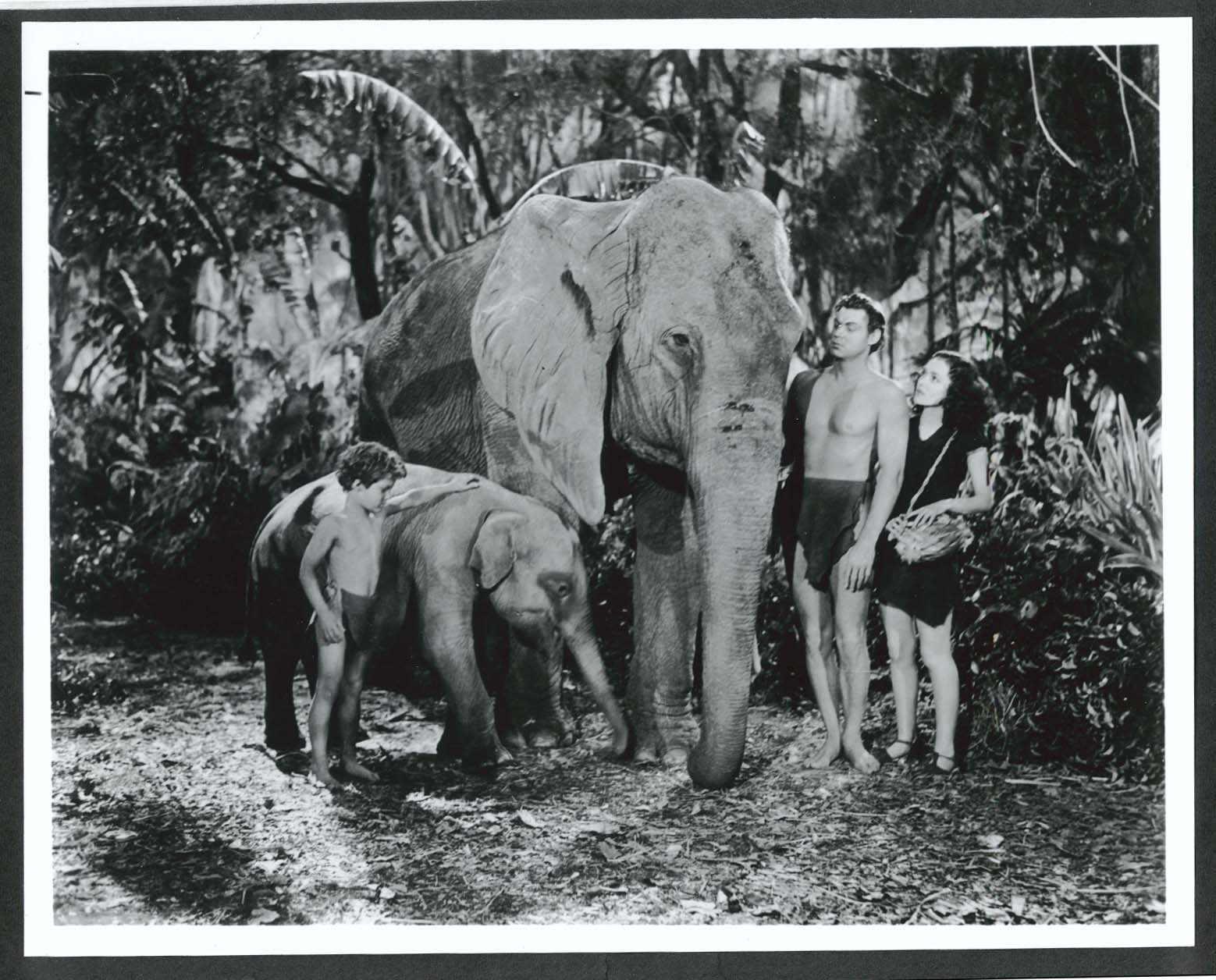 Image for Johnny Weissmuller Maureen O'Sullivan Tarzan 8x10 photograph restrike
