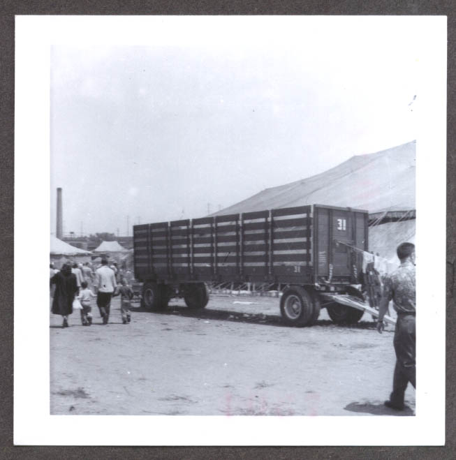 Livestock Wagon #31 Ringling Bros circus photo 1955