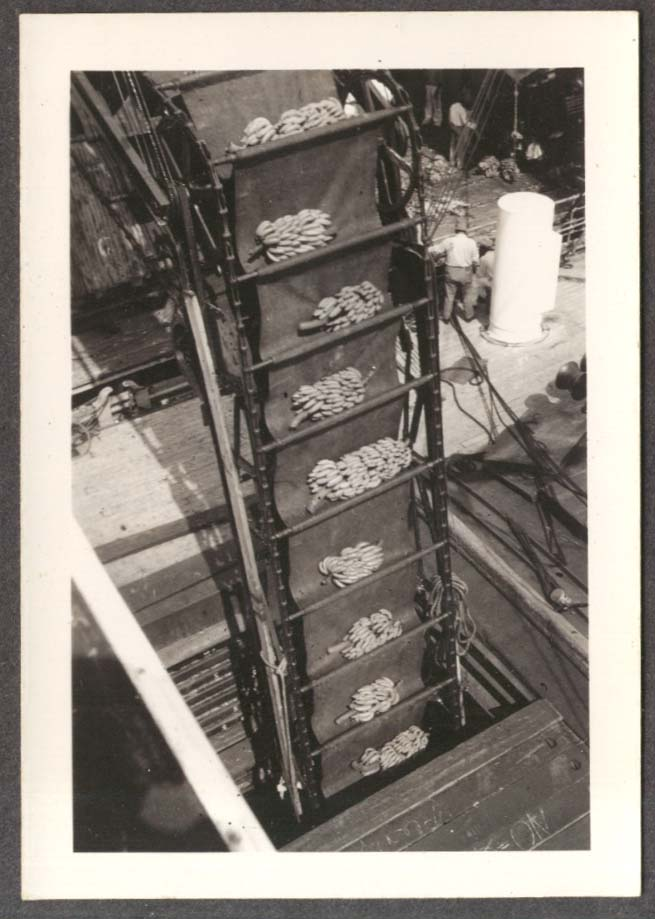 Loading bananas S S Amapala Honduras photo 1941