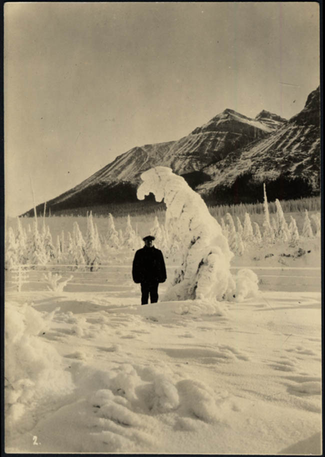Image for Ice formation Polar Bear Jack Frost Hector BC Canada photo ca 1940s
