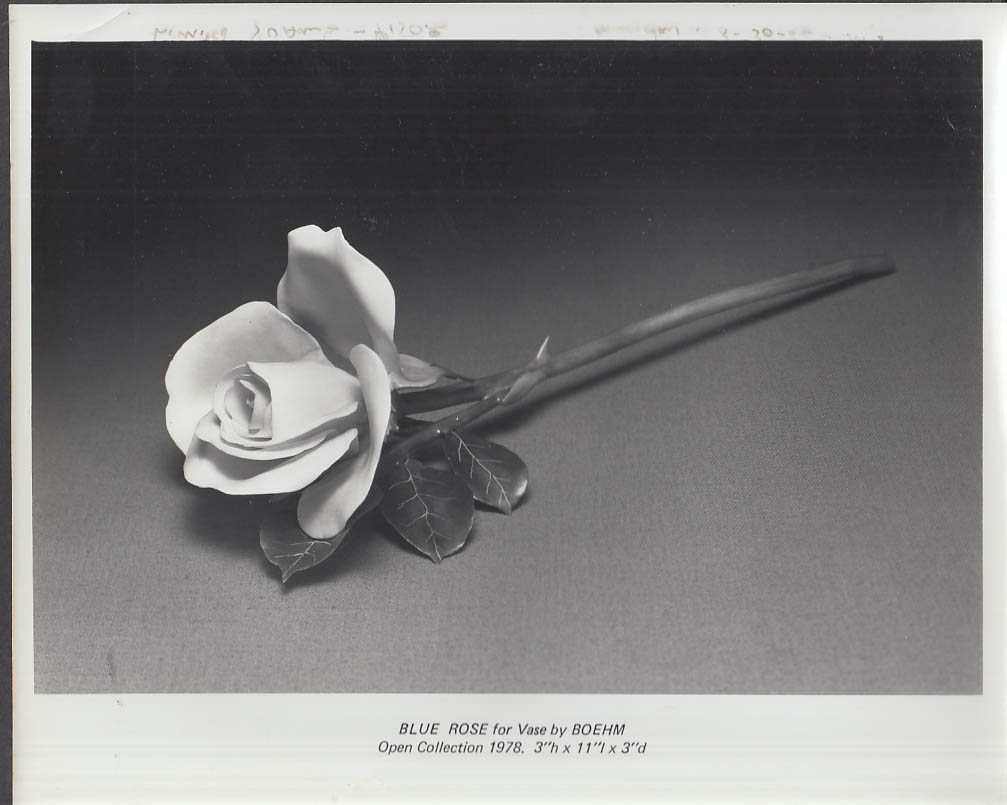 Boehm PUBLICITY photograph  Blush Rose 1978