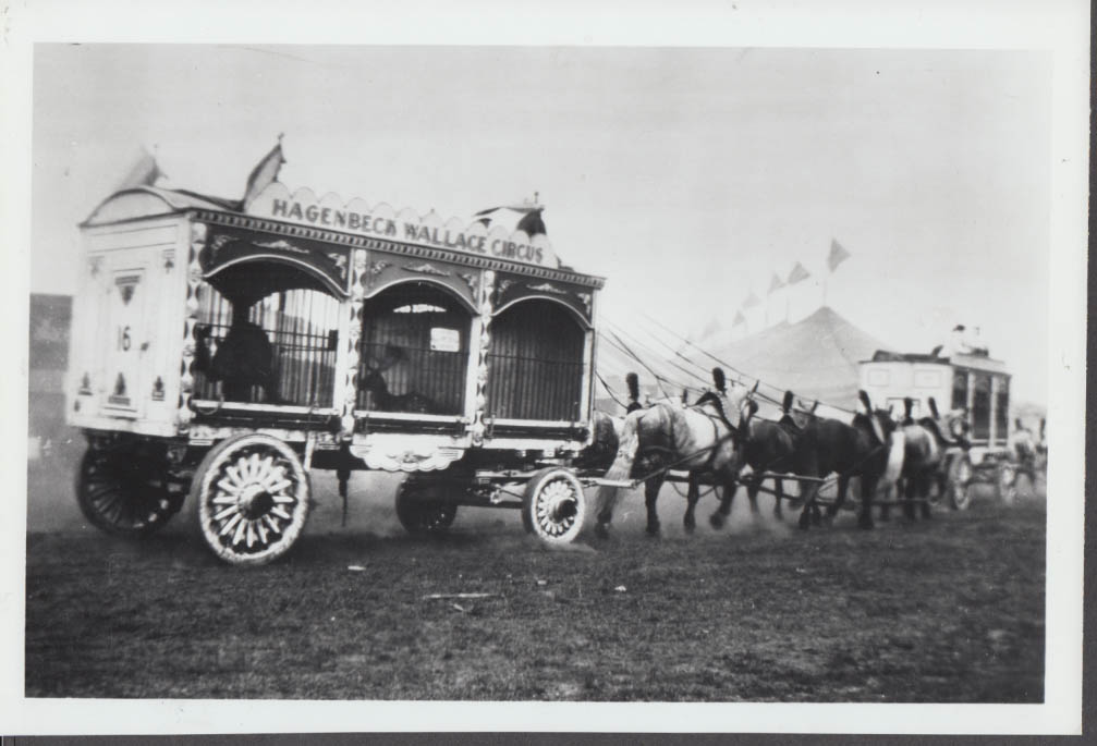 Image for Hagenbeck Wallace Circus horse-drawn animal cages photo 1920s
