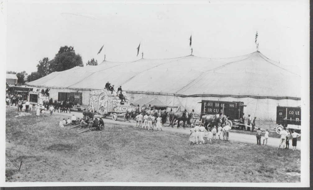 Image for Cole Bros Circus wagons parade past big top photo ca 1930s