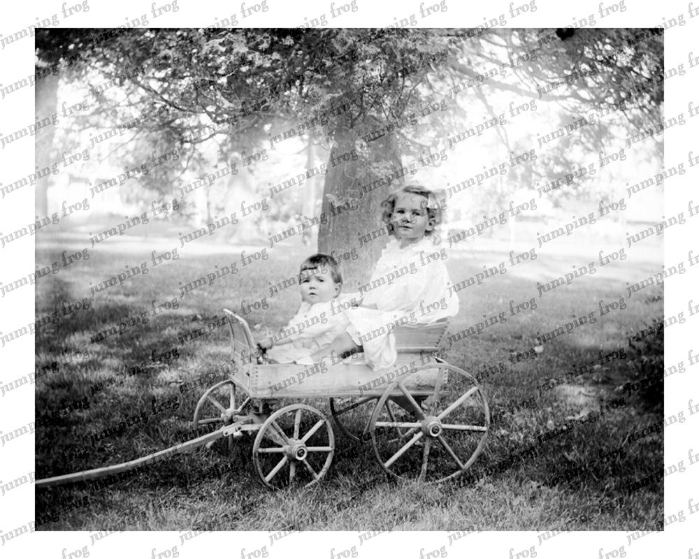 2 children in 4-wheel wagon under tree 8x10 ca 1880s