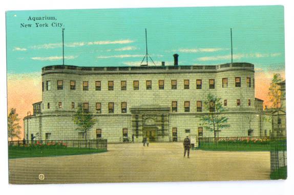 Image for New York City Aquarium color postcard 1910s