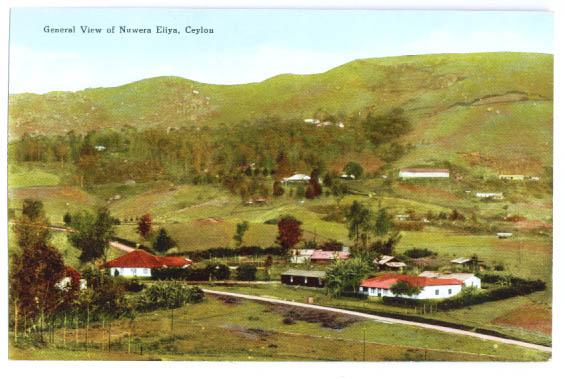Image for Nuwera Eliya View Ceylon postcard 1920s?