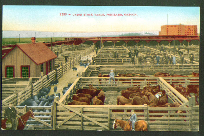Union Stock Yards Portland OR postcard 1910s