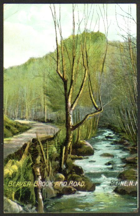 Beaver Brook & Road Keene NH postcard 1909