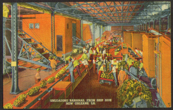 Unloading Bananas from ship side New Orleans LA postcard 1930s