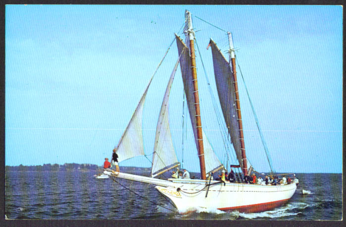 Windjammer Mary Day Sedgwick ME postcard 1960s