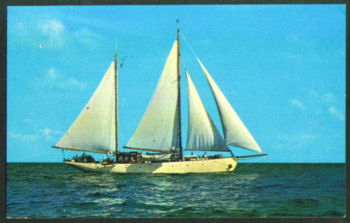Charter Yacht Alpha St Thomas USVI postcard 1950s