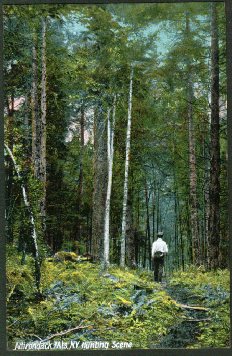 Hunting Scene Adirondacks NY postcard 1910