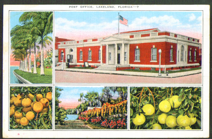 Post Office + Citrus Views Lakeland FL postcard 1920s