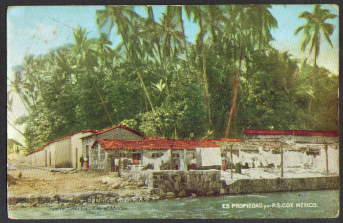 Public Laundry & Palms Colima MX postcard 1913