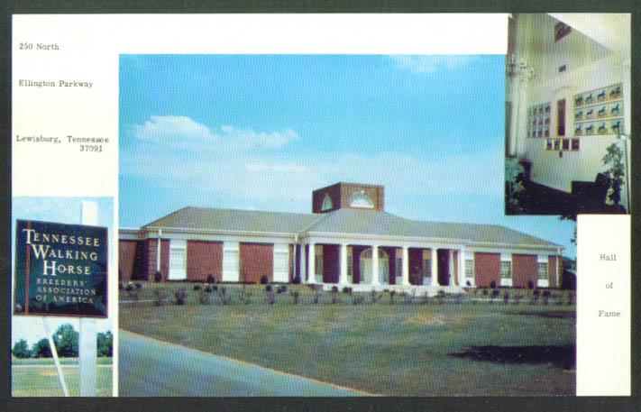 Tennessee Walking Horse Association Lewisburg TN postcard 1960s