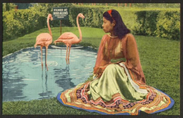 Ross Allen's Reptile Institute FL postcard 1940s