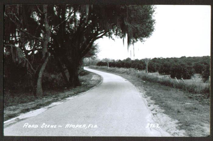 Road Scene in Apopka FL RPPC 1957