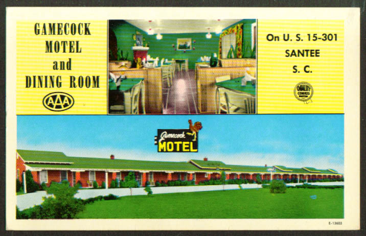 Gamecock Motel & Dining Room Santee SC postcard 1950s