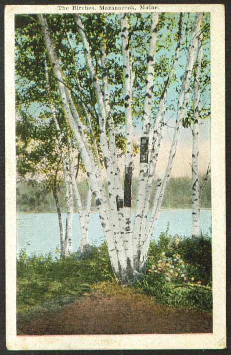 The Birches at Maranacook ME postcard 1923