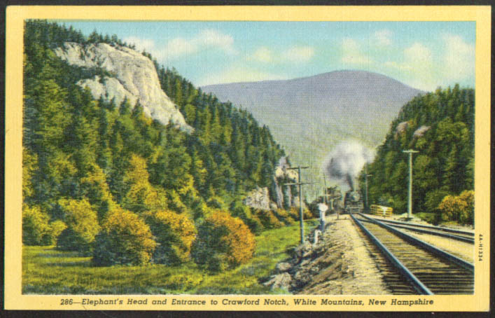 Train near Elephant's Head Crawford Notch NH postcard 1930s