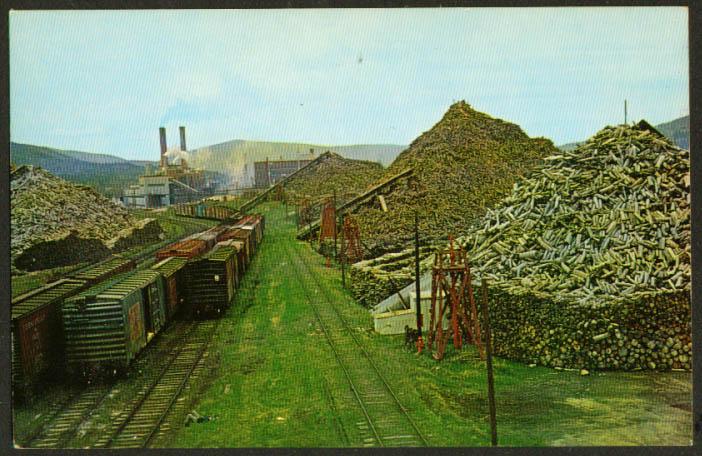 Pulpwood Piles & Mill Rumford ME postcard 1960s