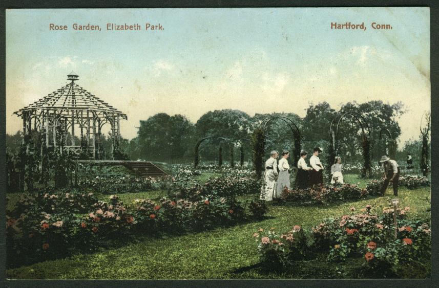 Rose Garden Elizabeth Park Hartford CT postcard 1910s