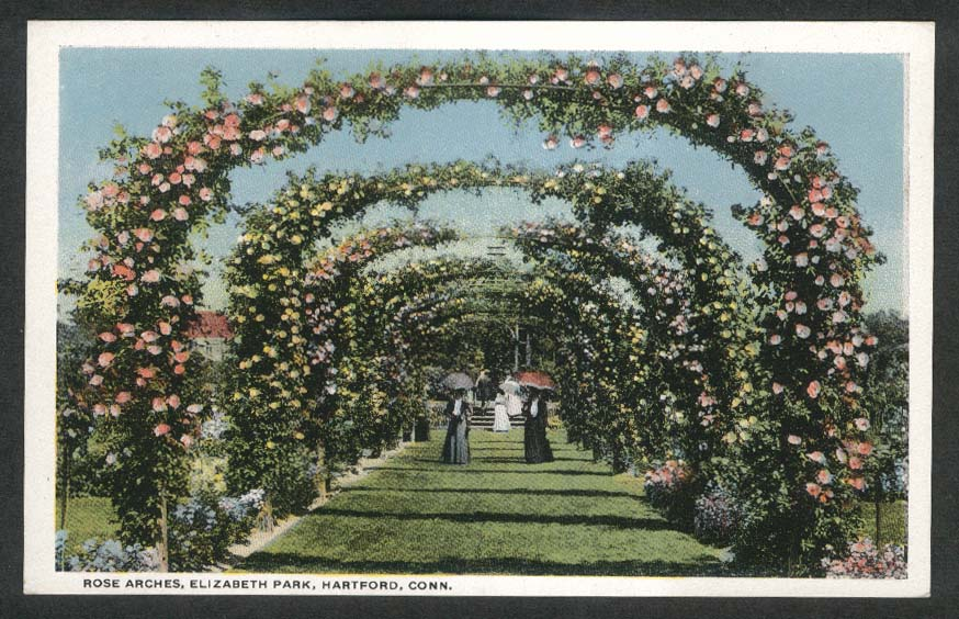 Rose Arches Elizabeth Park Hartford CT postcard 1910s
