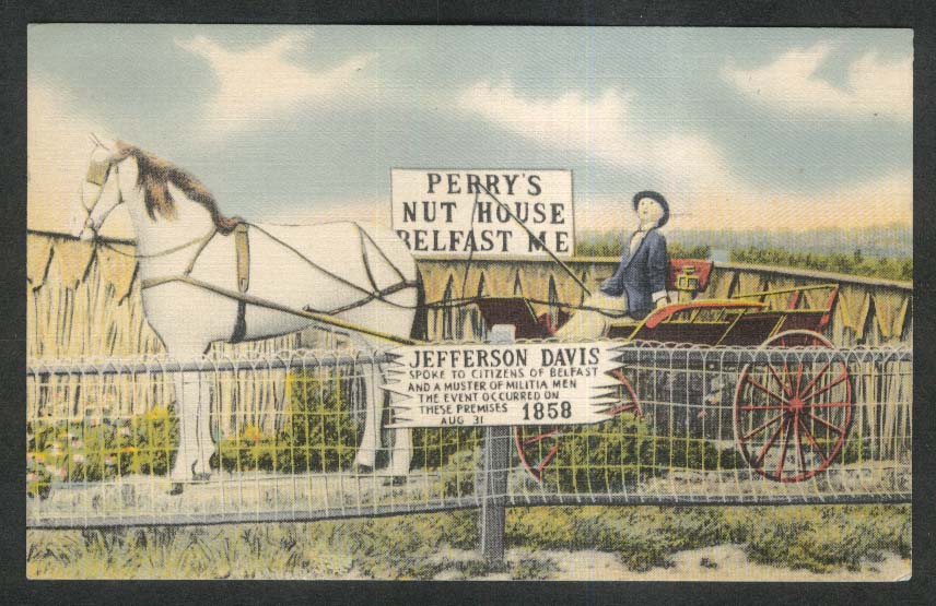Perry's Nut House Belfast ME Jefferson Davis sign postcard 1945